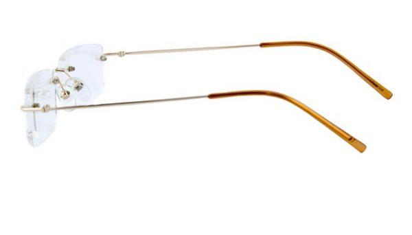 Leesbril Polaroid randloos S3431 goud/havanna