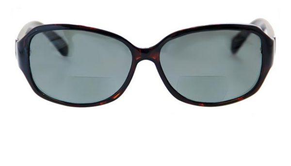 Leeszonnebril Polaroid S3301 bifocaal polariserende glazen